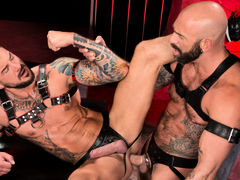 Colored ink, muscle, fur and pecker compete for your attention as Drew Sebastian and Dolf Dietrich lie entwined, making out and exploring their massive flesh. Each wears a harness and a leather jock strap with a pecker opening. Drew leans over to suck Dol